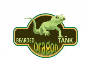 bearded-dragon-tank