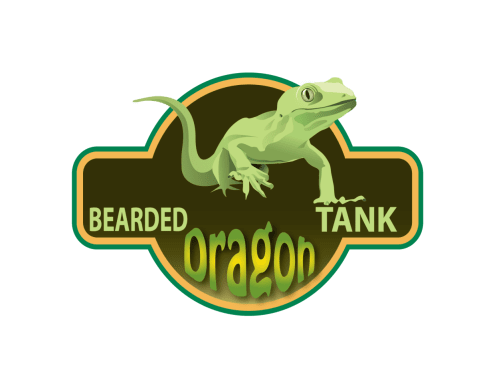 Bearded Dragon Tank