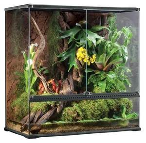 Exo Terra High Glass Terrarium
