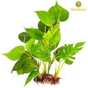 Plant Set by SunGrow