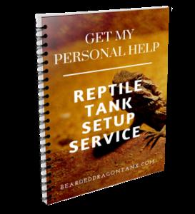 BDT Tank Setup Service