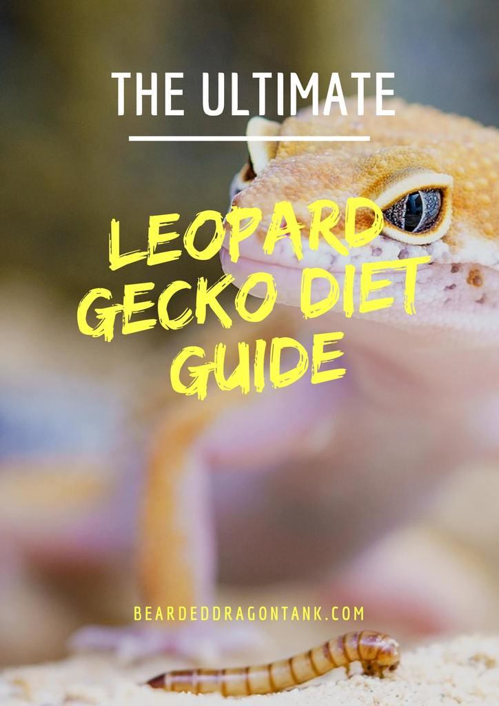 the ultimate leopard gecko food guide bearded dragon tank rh beardeddragontank com A Guide to Marijuana A Guide to Happiness