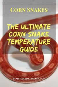 Corn Snake Temperature