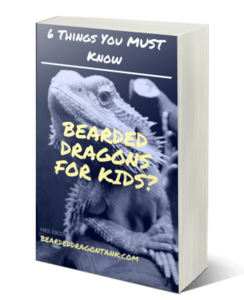 Bearded Dragons For Kids