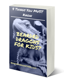Kids And Bearded Dragons
