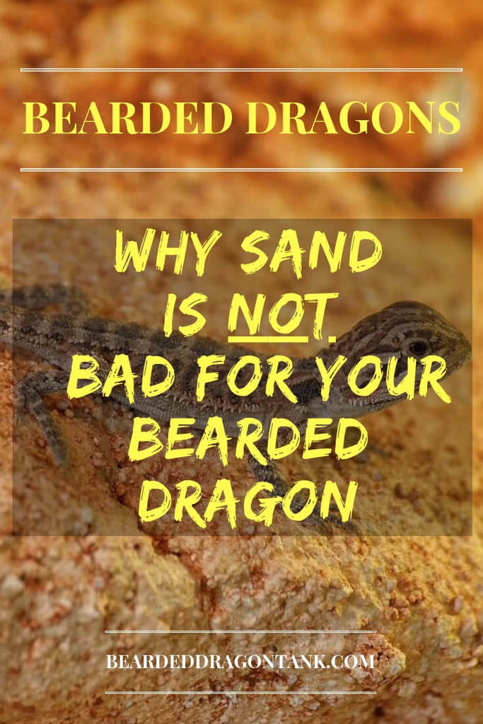 Is Sand Bad For Bearded Dragons